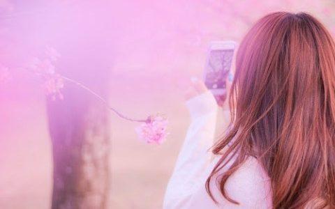 お花見コーデに合わせたい桜のアクセサリー13選!お揃いやデートに!