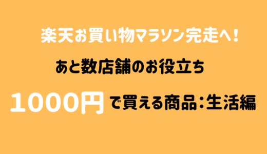 楽天お買い物マラソン完走に使える送料無料1000円ポッキリ生活雑貨9選
